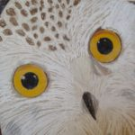 Owls in Pastel