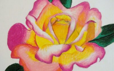 Colored Pencil Blending