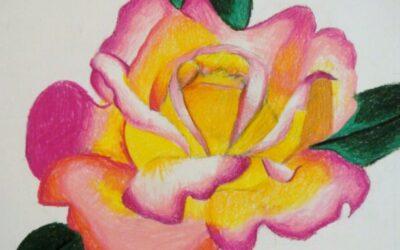 Colored Pencil Blending